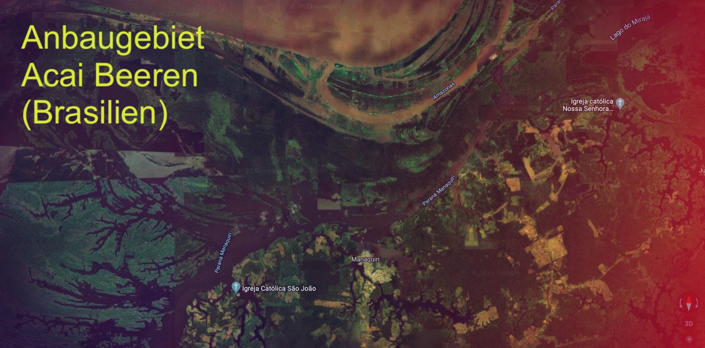 BIO Anbaugebiet in der Nähe von Manaquiri (Brasilien)