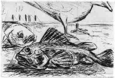 """Kaltnadelradierung """"Die Möwe/Skagen"""" Plattengröße 17.6 cm breit, 11,6 cm hoch Auflage 20-2005   80,00 €"""