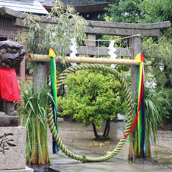 チガヤの茅の輪(佐奈部神社)