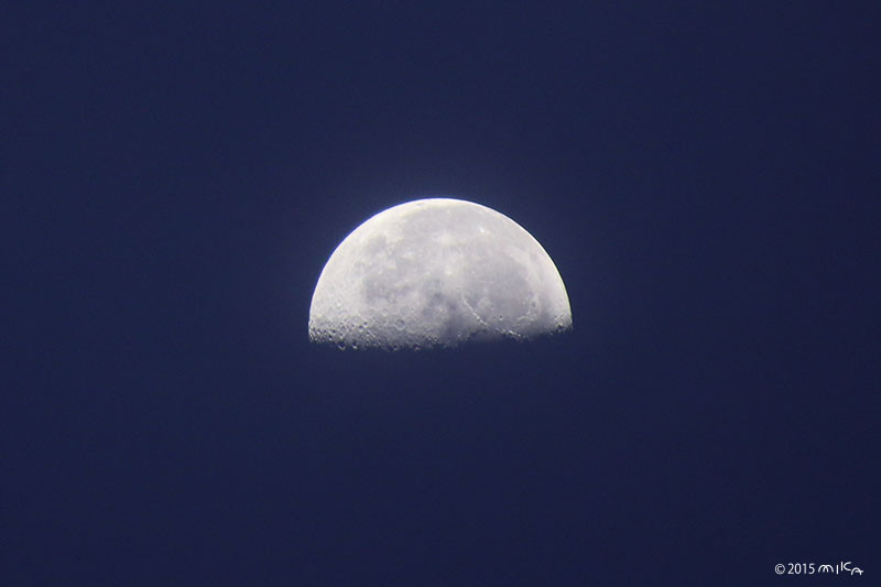 下弦の月(2015年9月5日 午前5時頃)