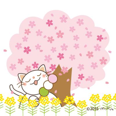 お花見ねこ