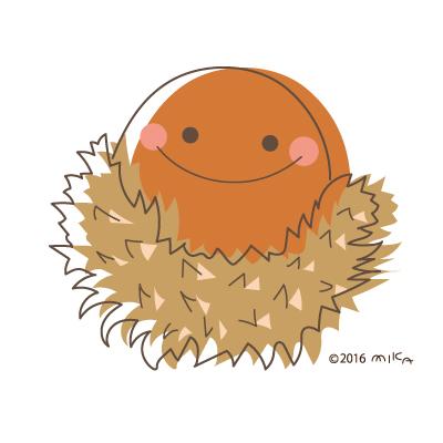 クヌギの実(どんぐり)