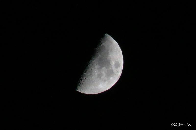上弦の月(2019年9月6日 )