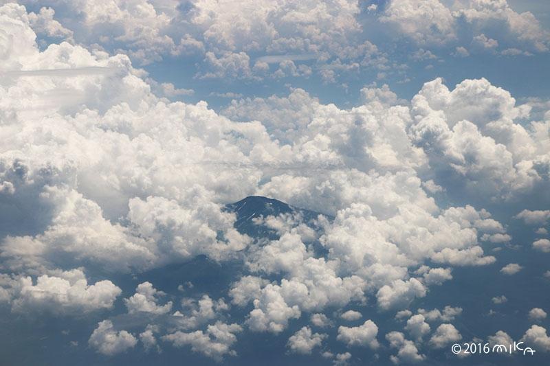 空から見た山