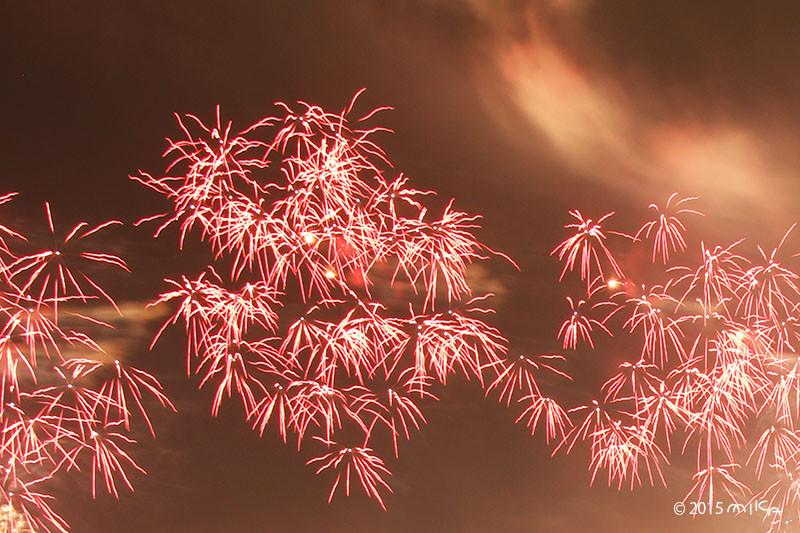 線香花火のような花火(2015びわ湖大花火大会)