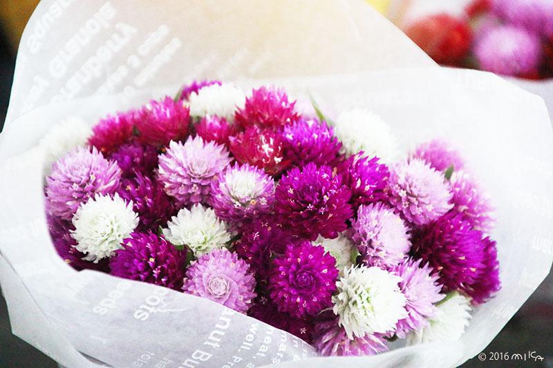 センニチコウの花束(ドライフラワー)