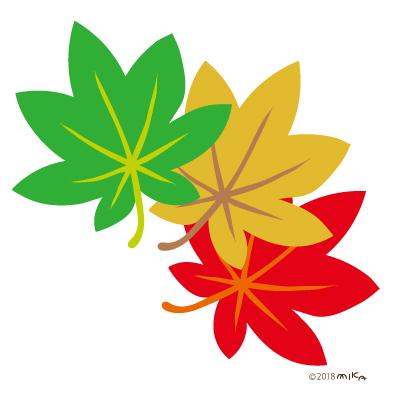 緑・黄・赤のもみじ三枚