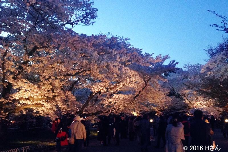 京都植物園(京都府Hさん)