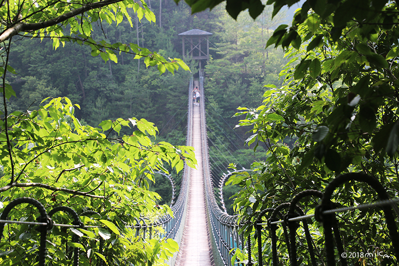 黒滝村の吊り橋