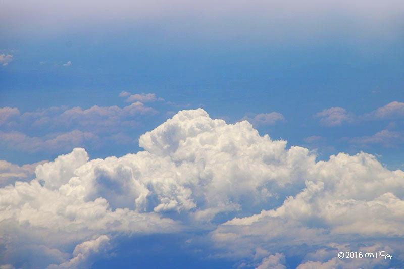 さかなの雲