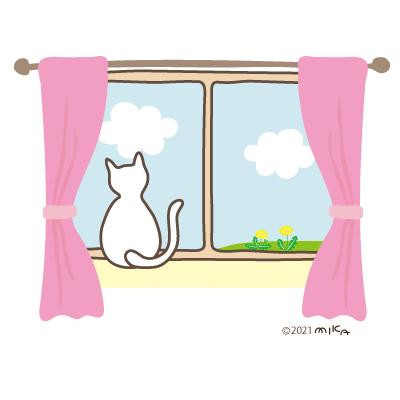 窓辺のねこ