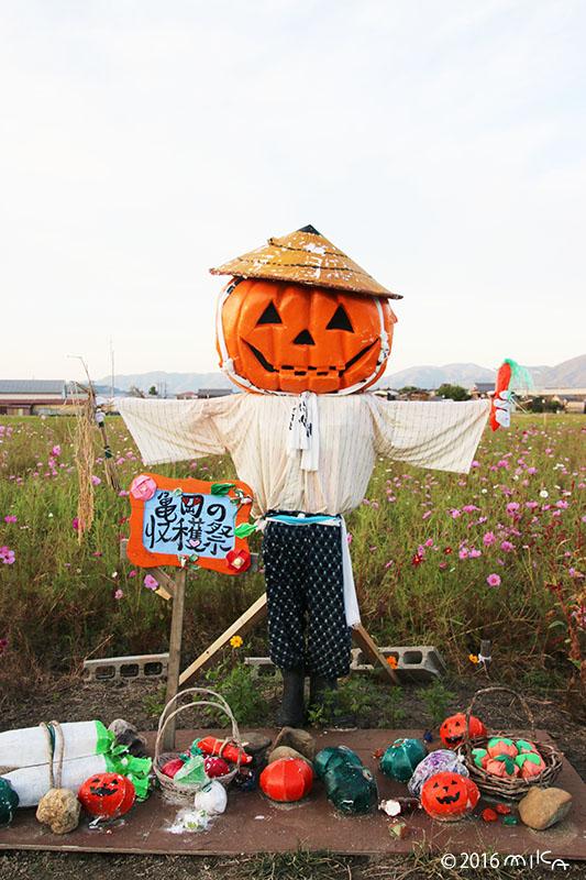 亀岡の収穫祭(瀬尾医院)亀岡夢コスモス園かかしコンテスト2016年