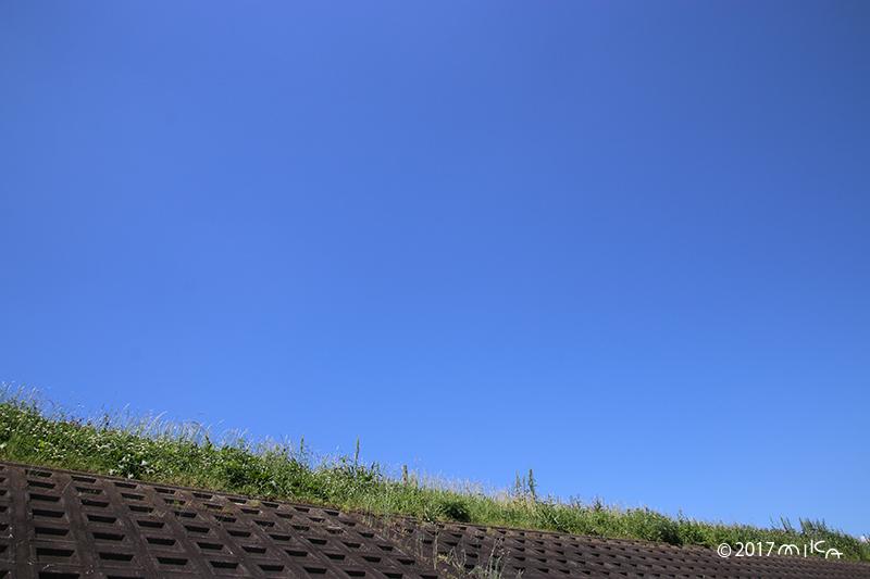 初夏の堤防(快晴)