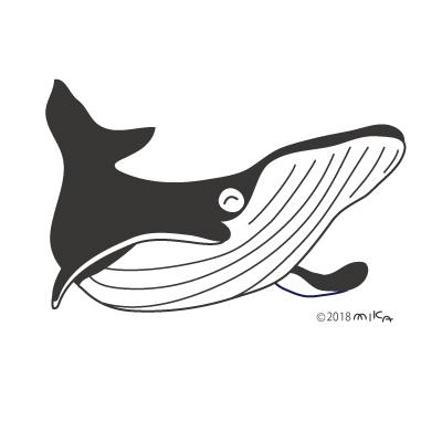 シロナガスクジラ①