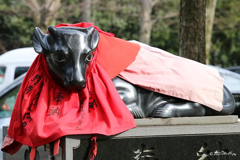 北野天満宮の牛の像(入口付近)