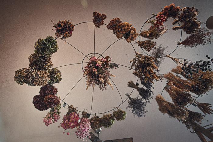 Les fleurs séchées