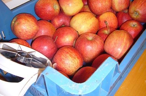 Zum Nachtisch gibt es Äpfel.