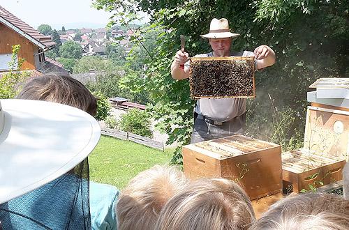 Toll so ein Bienenvolk.