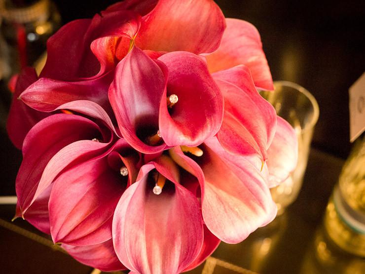 Trauzeremonien im Rheingau, Trauung, Eltville, Hochzeitszeremonie, Oestrich-Winkel, heiraten mit freier Trauung in Geisenheim, freie Theologen Rheingau, freie Redner Hochzeit Flörsheim heiraten im Rhe