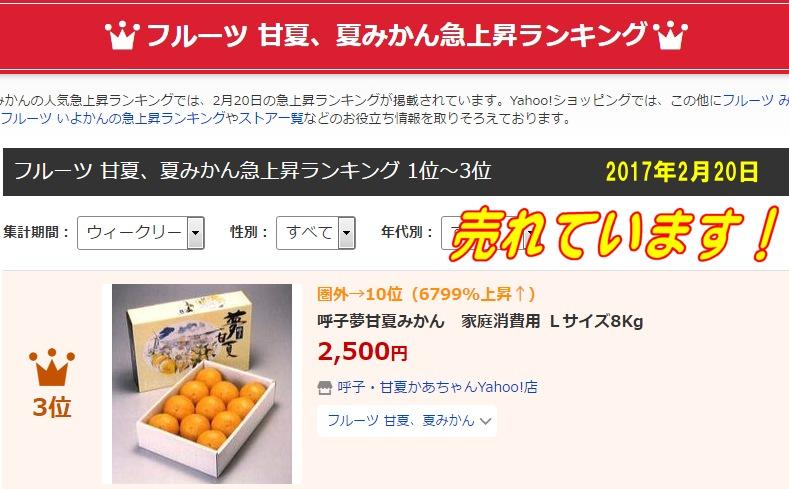 甘夏、夏みかんの人気急上昇ランキング3位、呼子甘夏みかん家庭消費用Lサイズ8kg 2017年2月20日