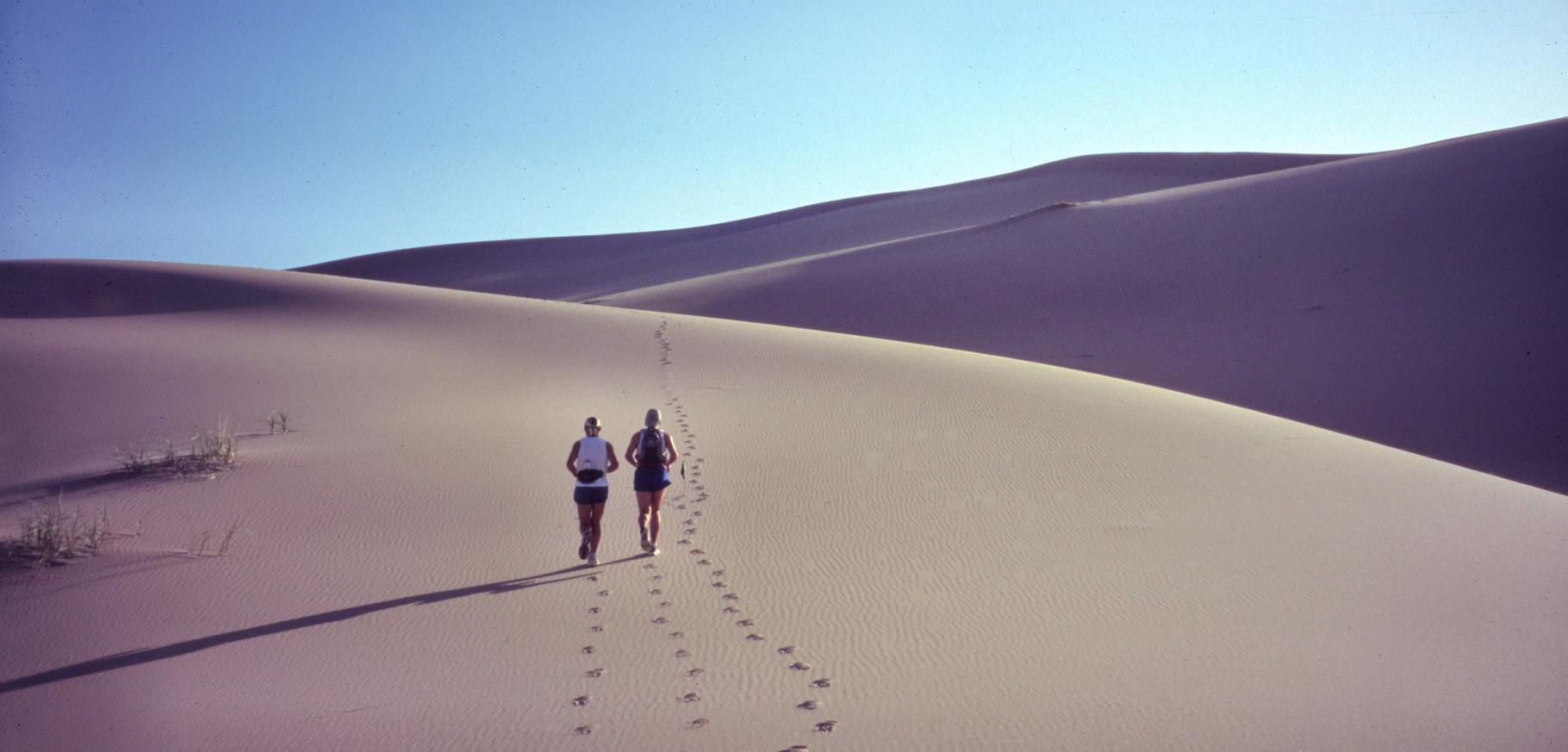 Wüste Gobi (Mongolei)