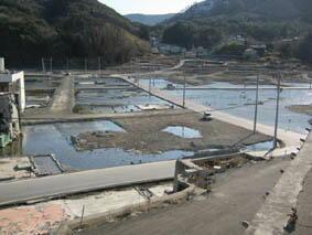 地盤沈下で海水が流入する女川町