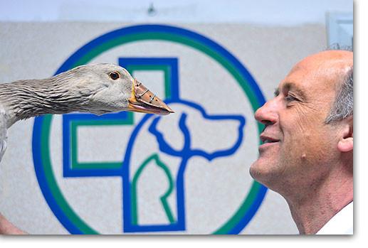 Medico Veterinario Dott. Alberto Briganti - Autore del Libro Becco di rame