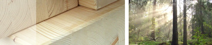 Holz Made in Germany