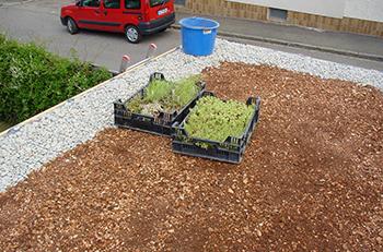 Carportdach vorbereitet für die Bepflanzung