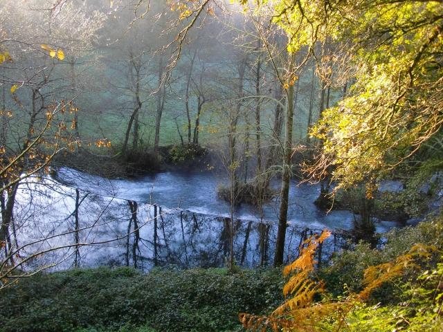 タロット女帝の豊かな川