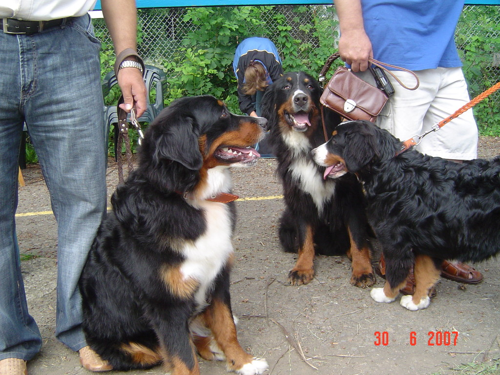 Баффи с дочерьми Трикси и Кенди