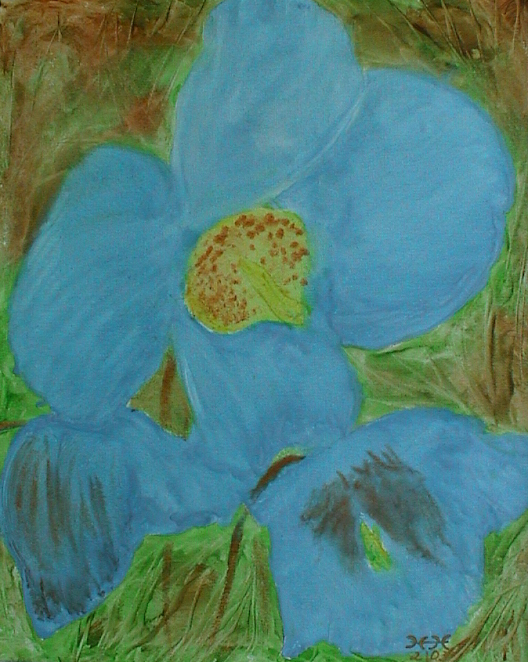 Nr. 25 - Blauer Mohn 40x50cm - 400 €