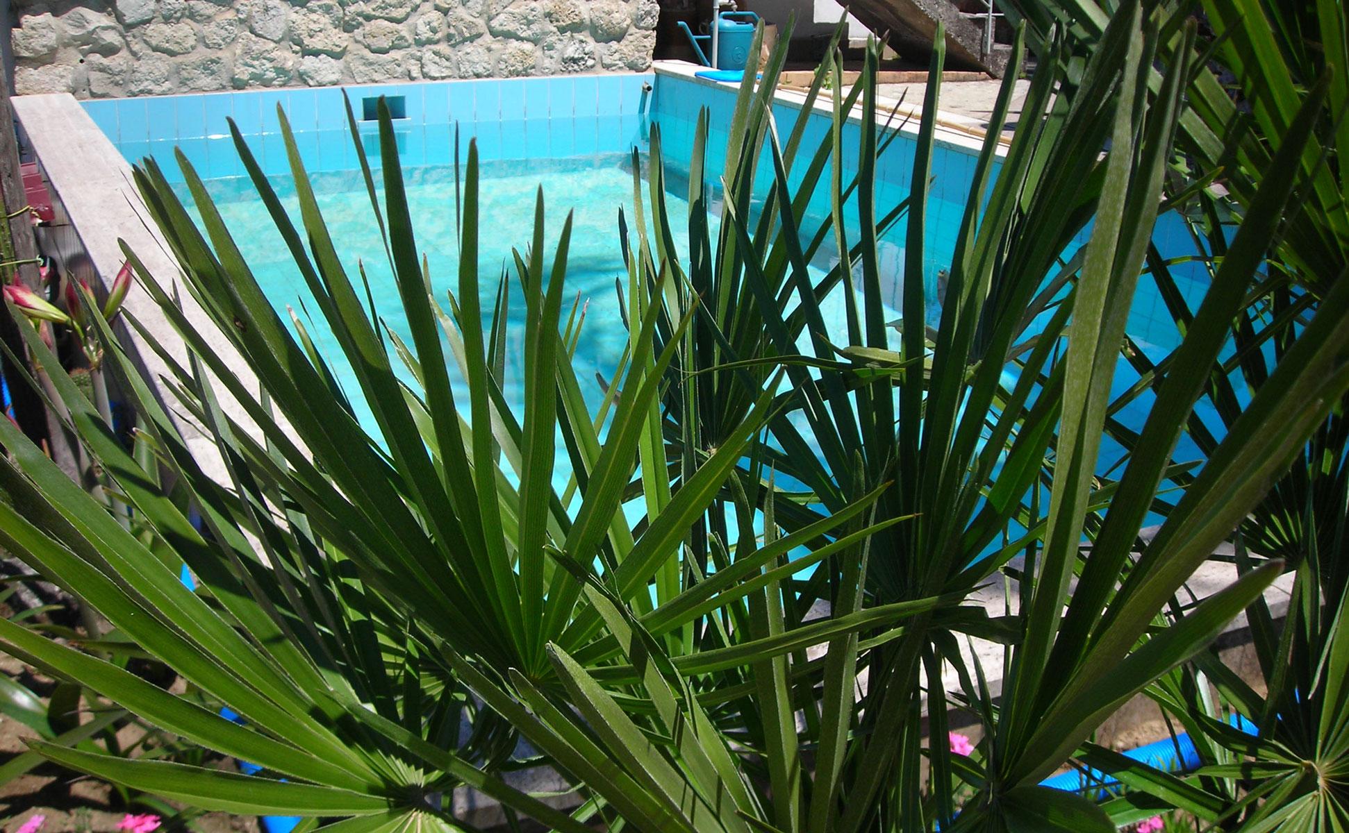 Pool Detailansicht © Ferienwohnung Spilinga | Tropea | Kalabrien - Casa Belle Vacanze