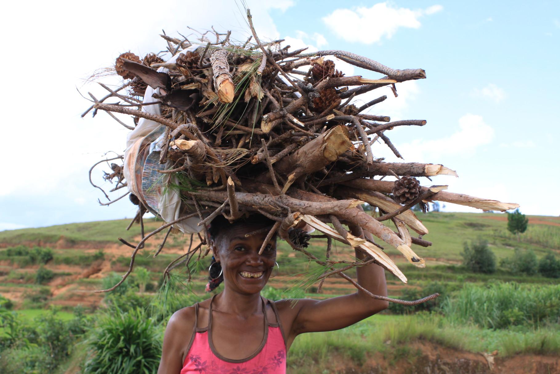 le ramassage de bois pour le feu: une corvée journalière