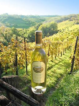 Jurançon (vignes - vin)