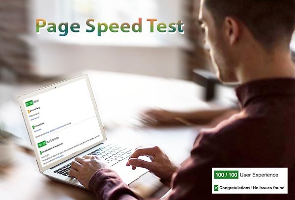 velocità hosting e page speed test