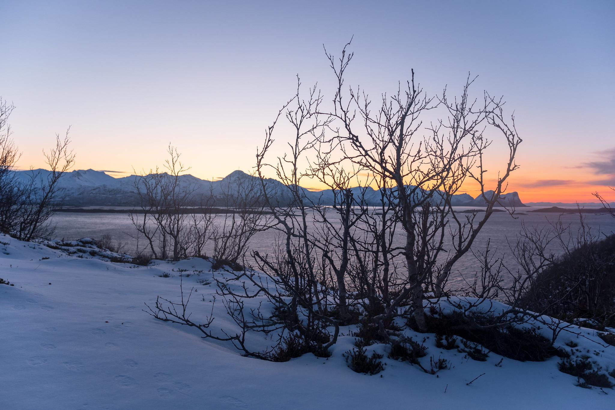Bei einer Wanderunghoch zum Strandbyskaret, einer Hochebene zwischn Husfjell und Steinsethögda