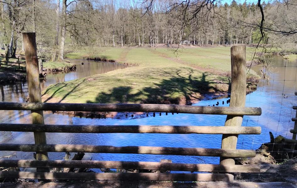 Die Osterau mäandert immer noch durch den Park.