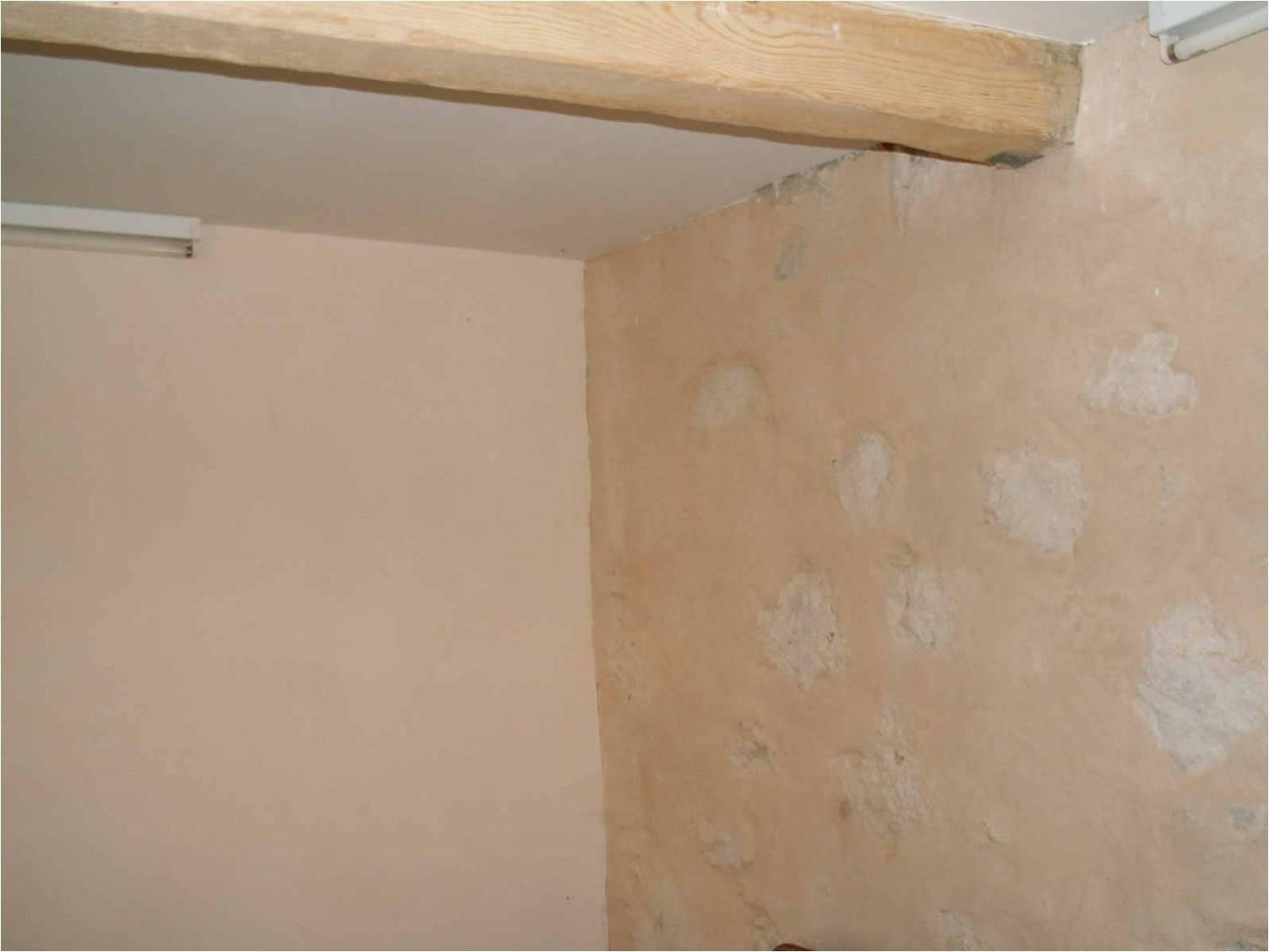 III-Rénovation salle à manger et mise en valeur des pierres dans l'Ain (01)