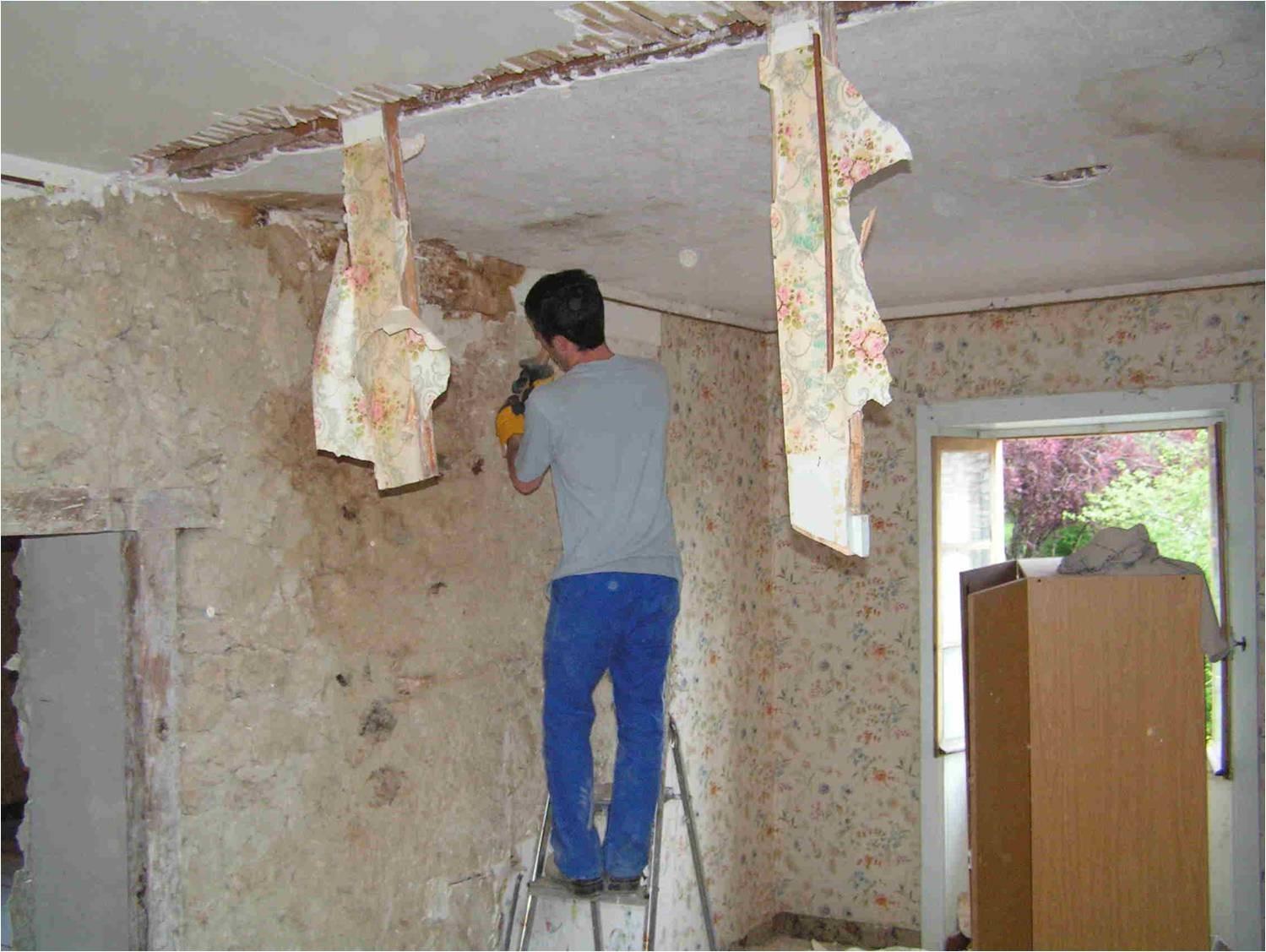 VI-Rénovation des plafonds et mise en valeur des murs en pierres dans l'Ain (01)