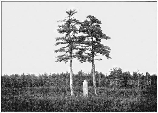 Fig. 61 - Tombe d'Olivier Gamache à Baie Ellis, autrefois Baie Gamache