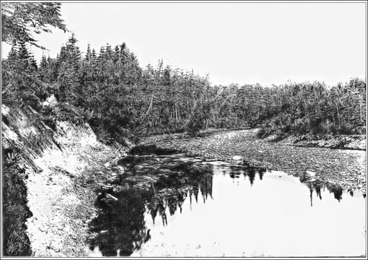 Fig. 63 - Embouchure de la rivière Bec-Scie
