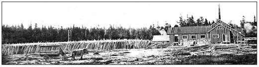 Fig, 59 - Moulin à scie et à préparer le bois de pulpe - Immense lot de bois destiné à être coupé et écorsé sur la ferme St-Georges.