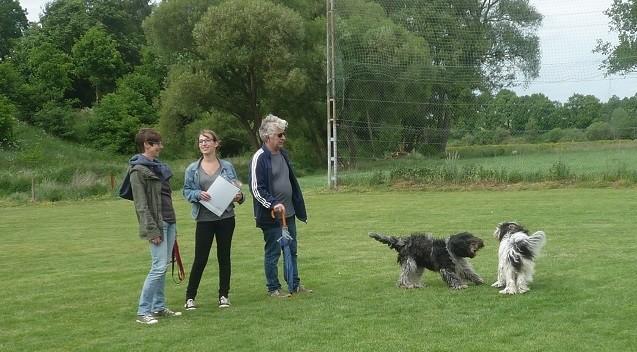 Simone, Louise und Stefan mit Banba und Antje Bessie