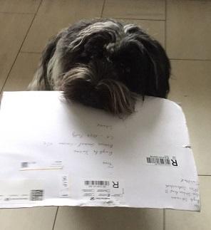 Bea Nala hat Ihre Ahnentafel per Post bekommen