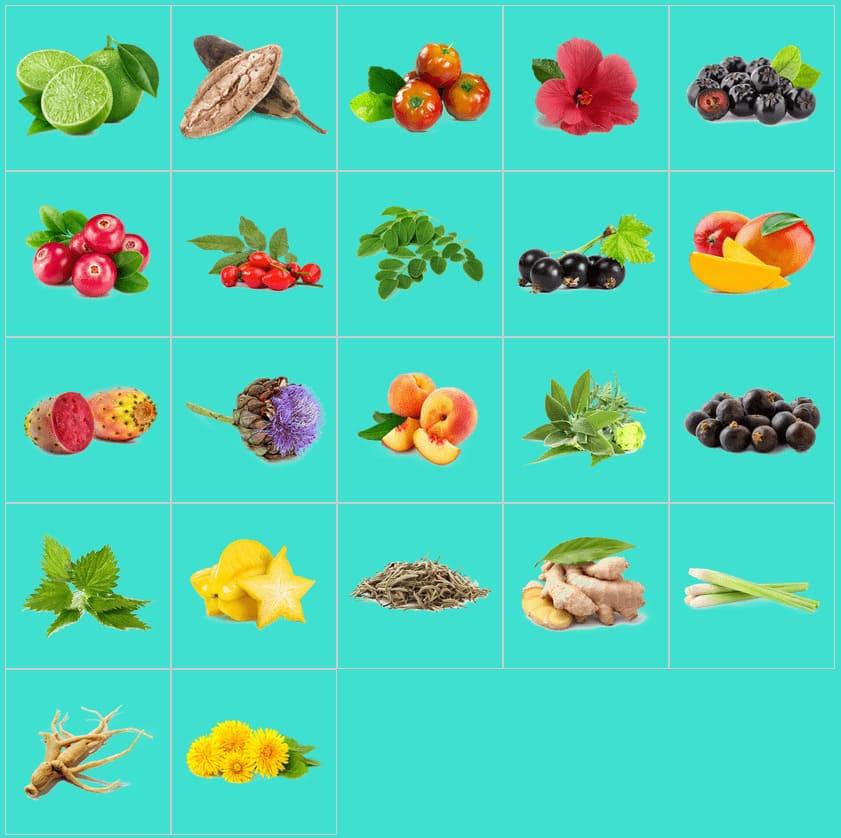 diversi tipi di estratti di frutta e piante