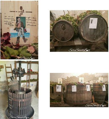 La cantina di orgosolo del vino