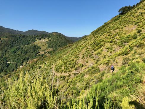 Hin- und Rückweg nahe Passo della Forcella