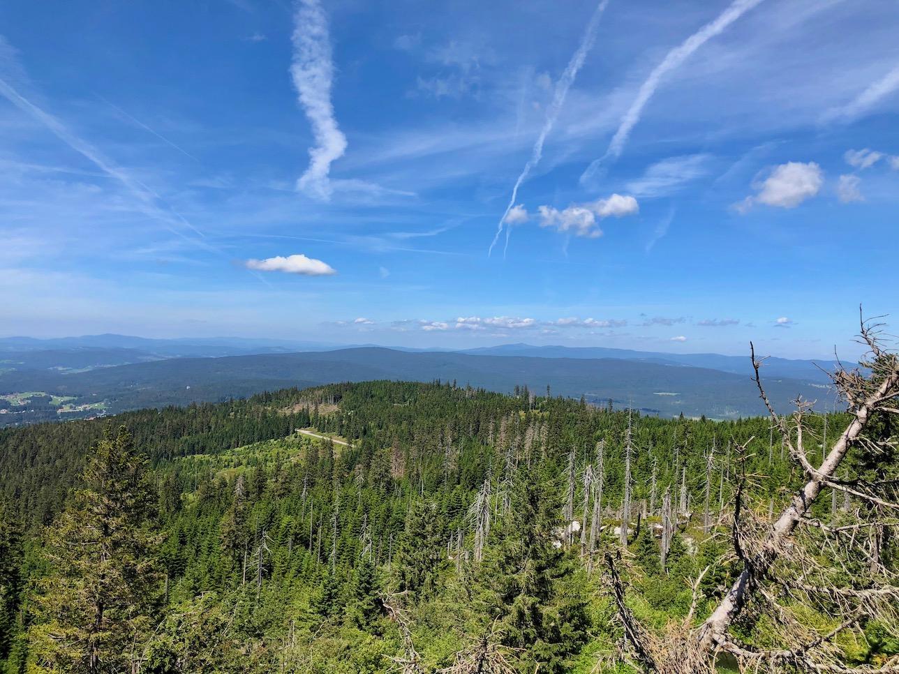 Blick vom Gipfel des Dreisessels nach Westen
