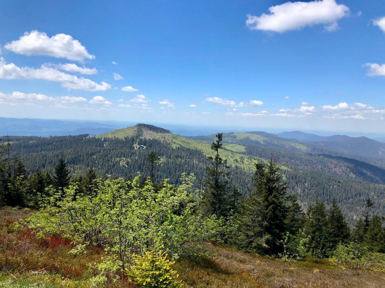 Großer Arber, Bayerischer Wald